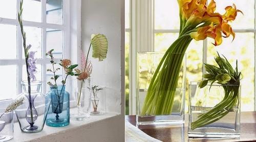 decor-flores-plantas-3.jpg