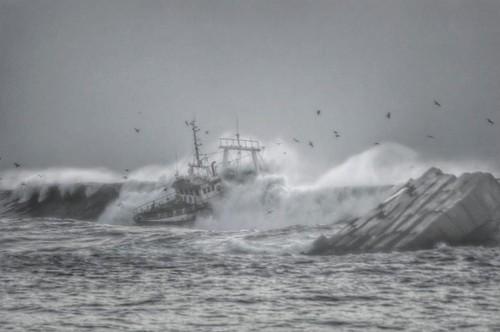 naufragio 2.jpg