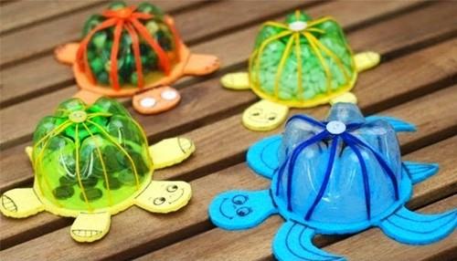 tartaruga pet.jpg