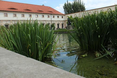 IMG_3105 - Praga