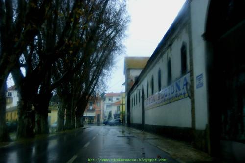 EstradadeColares10022016blog copy.jpg