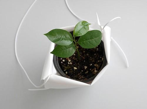 plantas-pot-cradle-6.jpg