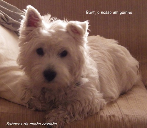 IMGP4022-Bart-Blog 1.jpg