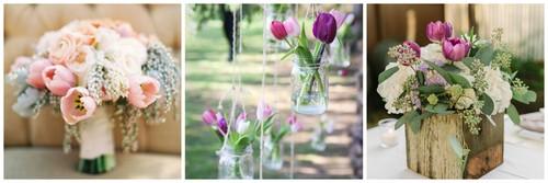 tulipas.jpg