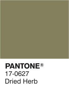 17-0627-dried-herb-pantone-fashion-color-report-ou