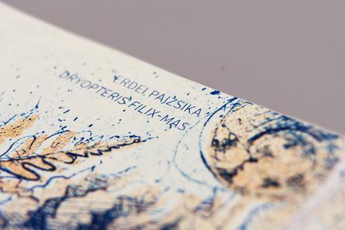 barbara-bernat-hungarian-paper-money-designboom-05