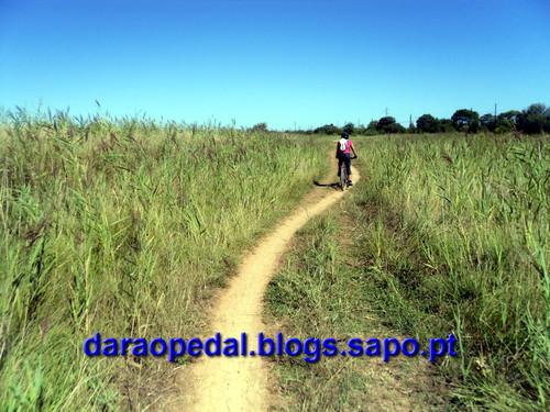 Canal_midi_dia_04_23.JPG