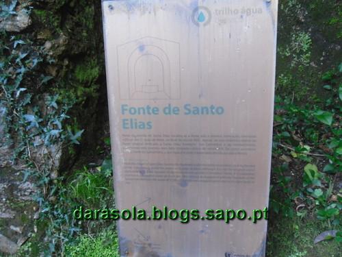 Mata_Bucaco_38.JPG