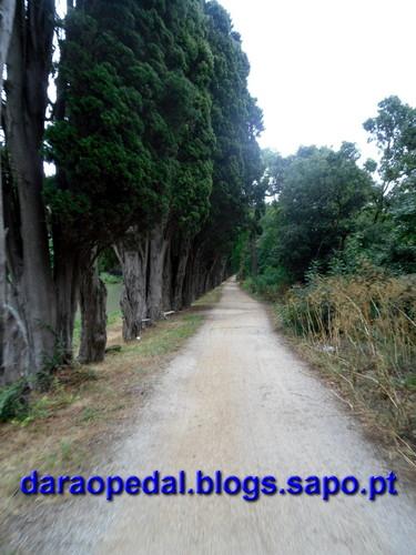 Canal_midi_dia_03_04.JPG