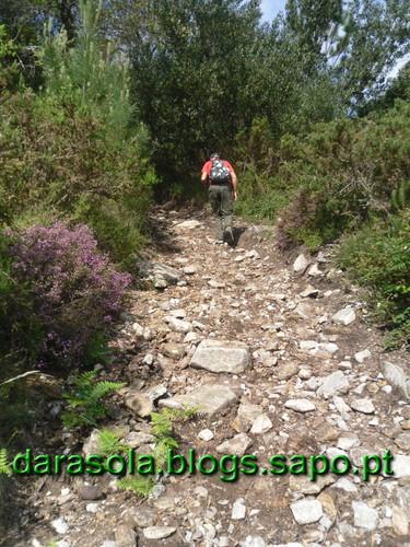 Arriba_Fossil_Esposende_07.JPG