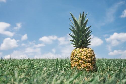14 alimentos para combater a retenção de líquidos
