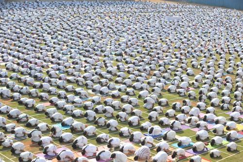 potd-yoga_3078309k.jpg