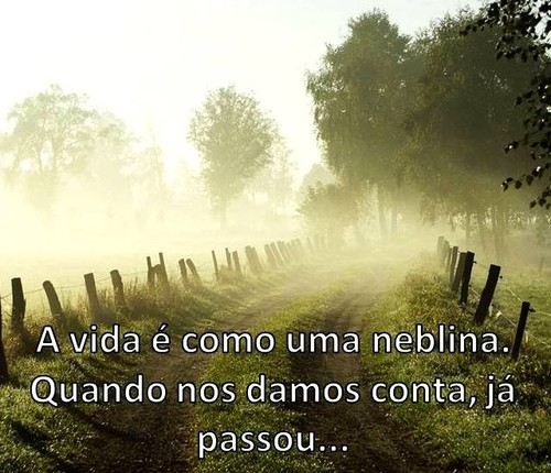A vida é como uma neblina[1].jpg