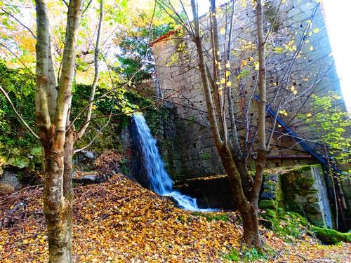 Fotos de Outono !!! 103.jpg