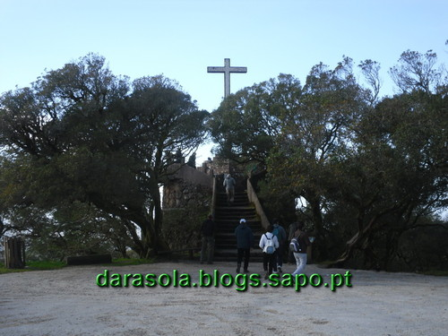 Mata_Bucaco_03.JPG