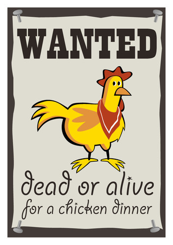 a6_prints_mad_postcards_chickens_portrait3.jpg