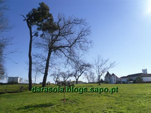 Gonde_Estarreja_09.JPG