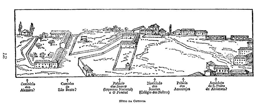 14_sitio-cotovia.png