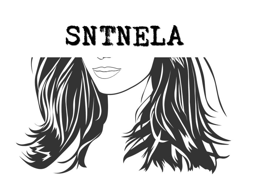 sntnela_blogs_sapo_pt.png