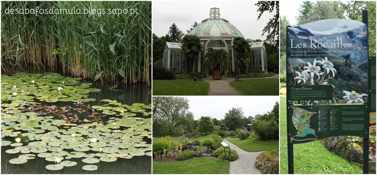 Jardim Botanico 2.jpg