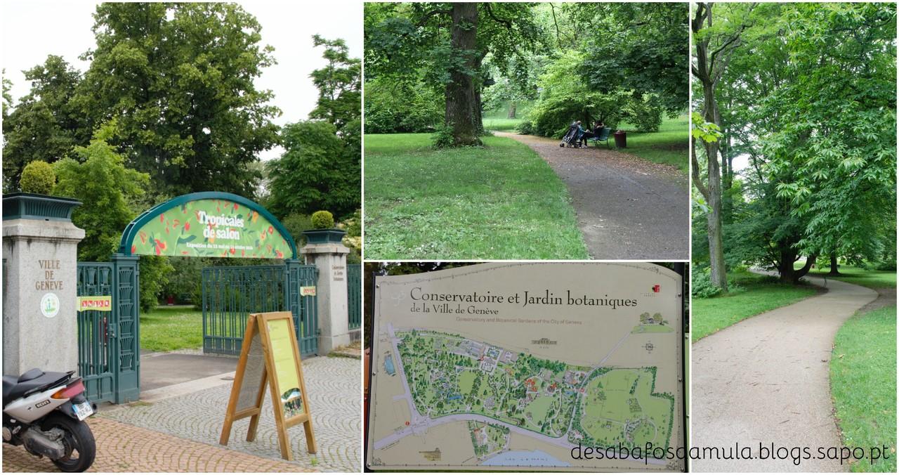 Jardim Botanico 1.jpg