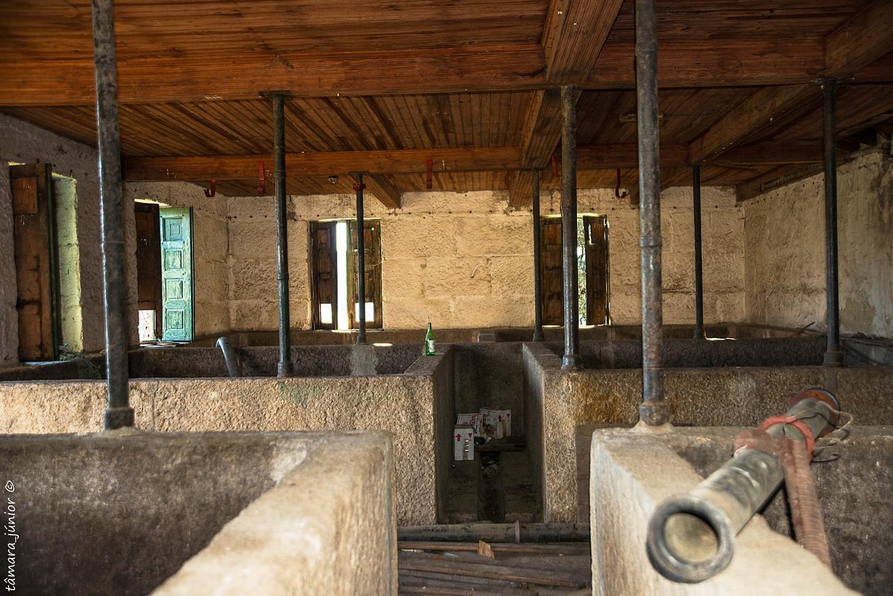 03.- 2016 - Quinta do Calvário (Paranheiras) (3).