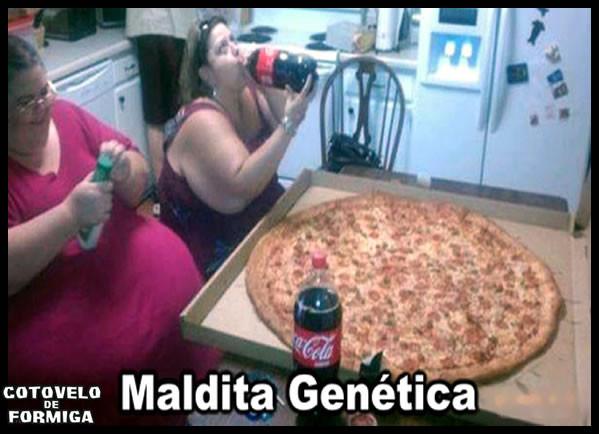 Não-tenho-culpa-de-ser-gorda-é-a-genética