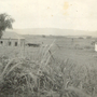 1950-_DUAS CASAS.JPG