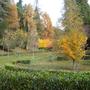 Caramulo_- Parque Abel Lacerda - Outono.JPG
