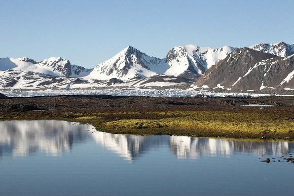 Tundra_Biome_600.jpg