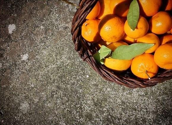 tangerina.jpeg