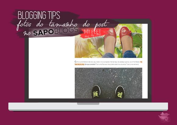 blogging-tips_sapinho.png