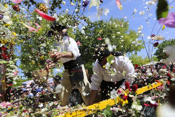 Batalha das Flores (2)