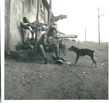 amadeu-nambu-cao