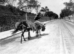 Av-Antonio-Augusto-de-Aguiar-1908.jpg