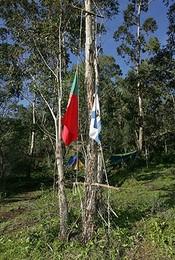 As bandeiras