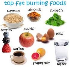 Fat burning foods (24-10-15)