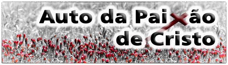 _AutoDaPaixãoDeCristo2 - Cópia.jpg