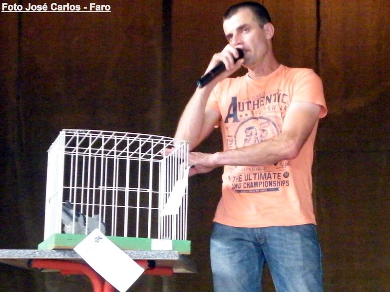 Leilão Luz Tavira 2015 022.JPG